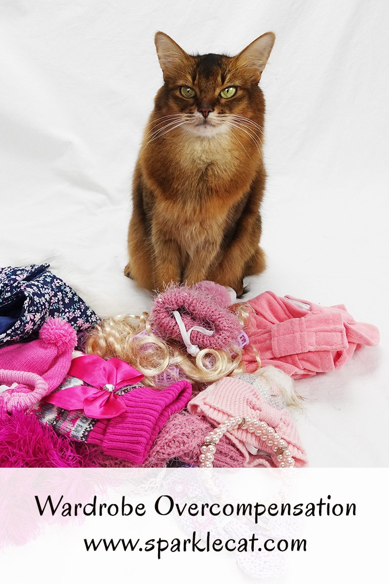 Summer\'s human gathers together wardrobe for this weekend\'s cat show... but overcompensates for the cold.