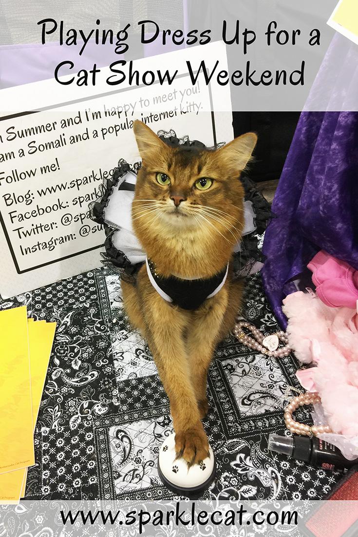 Dress Up Cat Show Weekend