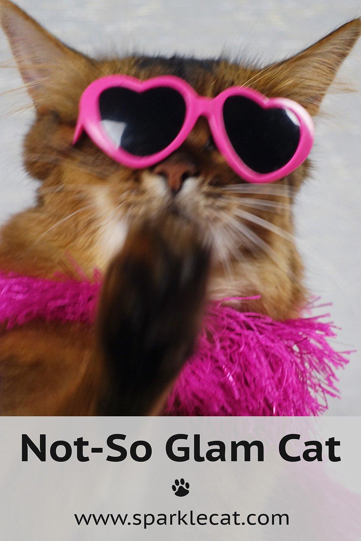 Not-So Glam Girl