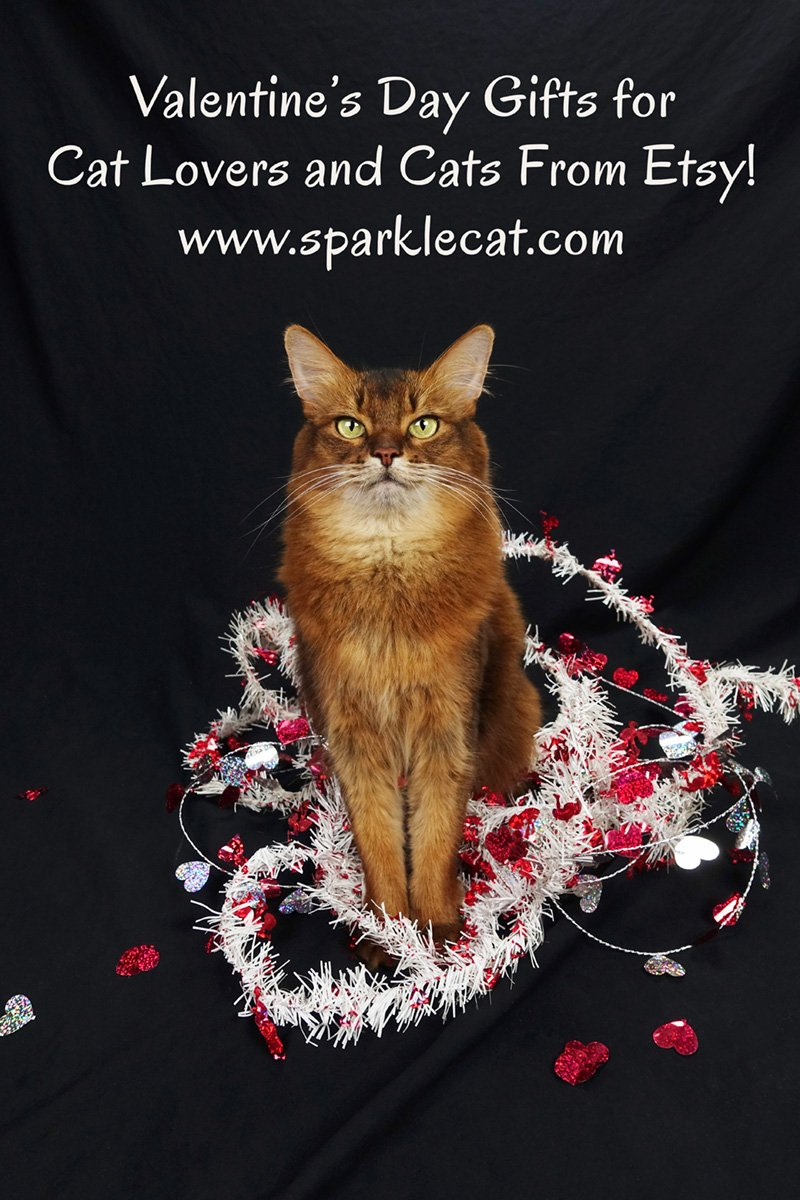 Summer shares some Valentine\'s Day gift ideas for cat lovers and cats that she found on Etsy.