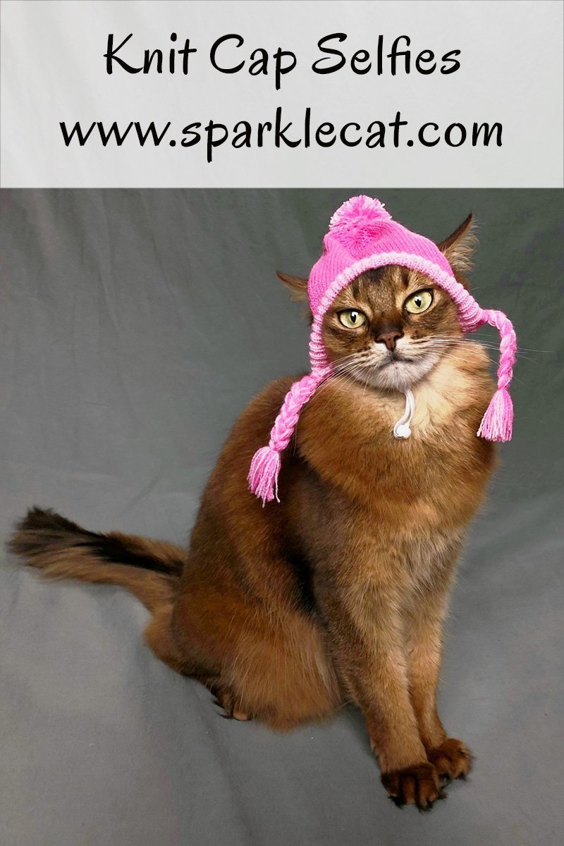 While picking out her wardrobe for Meet the Breeds in New York, Summer pauses to take some selfies in a knit cap.