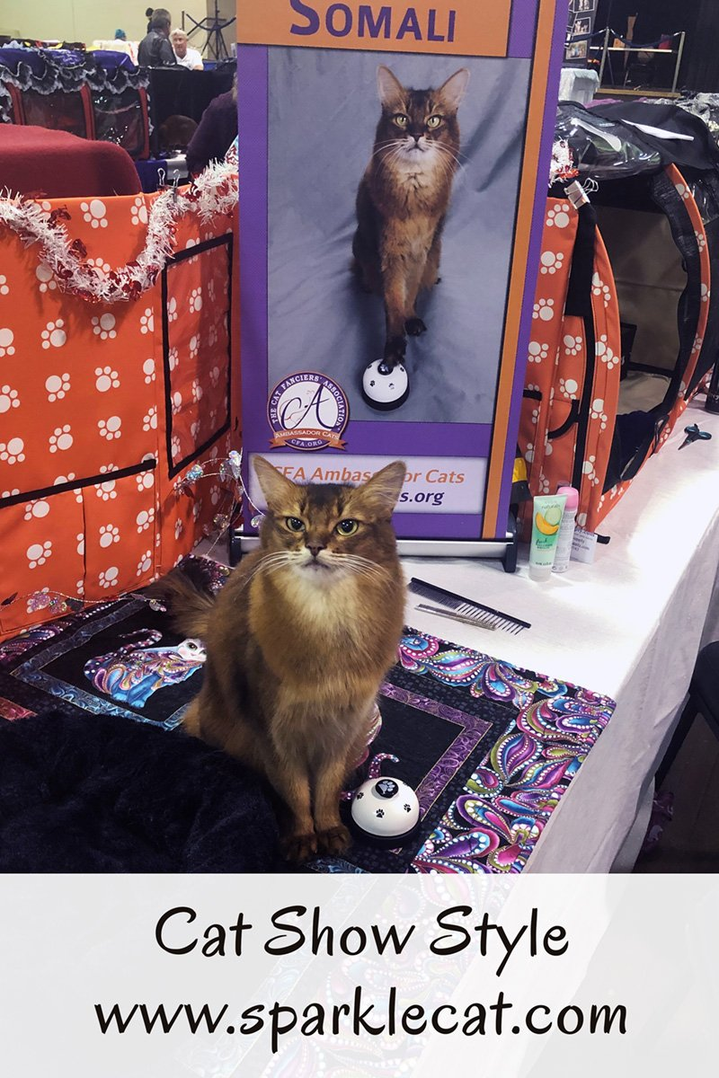 Cat Show Style