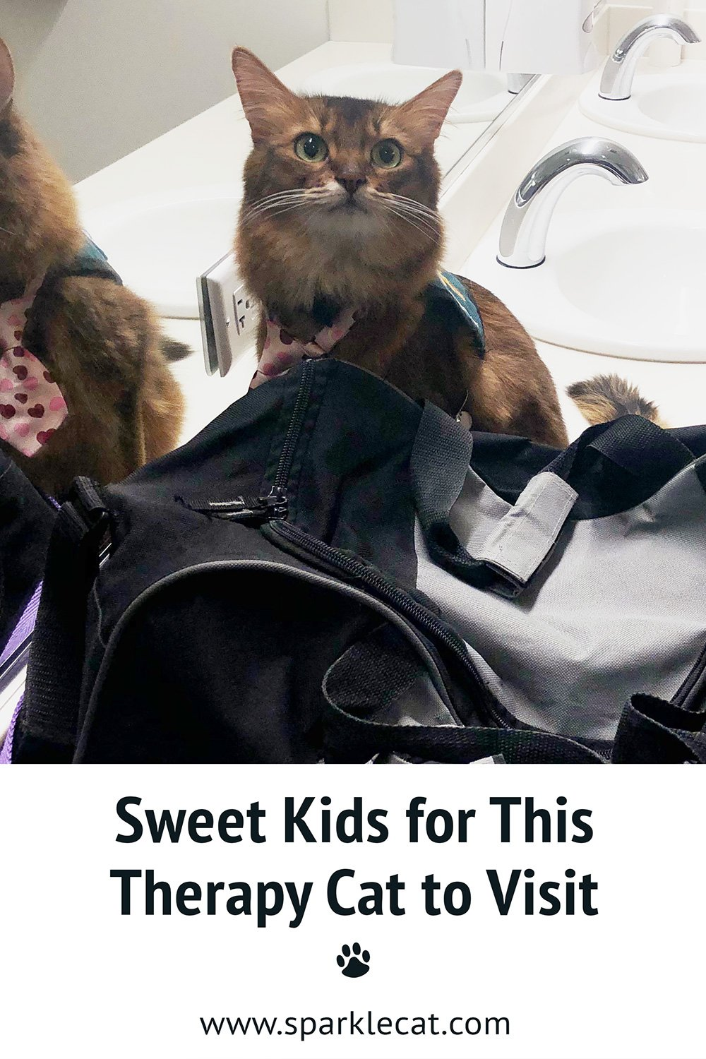A Bunch of Sweet Kids to Visit