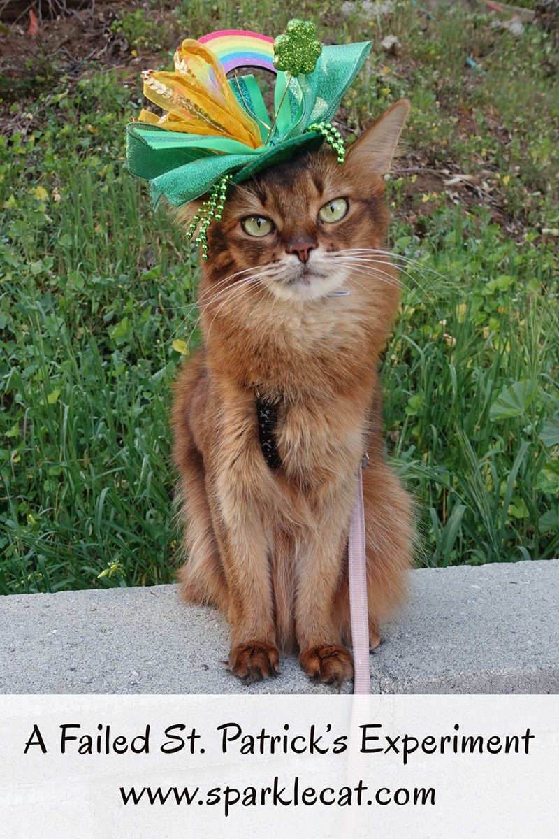 Summer takes part in a failed St. Patrick\'s experiment.