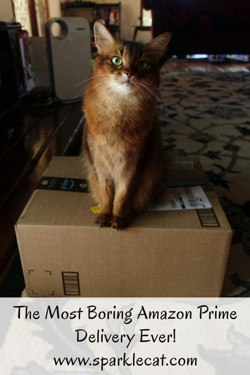 Summer is excited about the new delivery from Amazon Prime... until she realizes how boring the contents are.