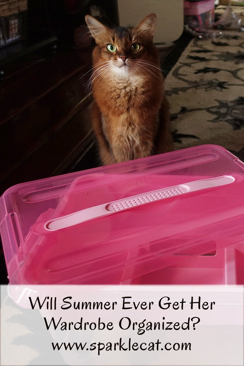 Even with more storage boxes, Summer continues to have wardrobe box woes.