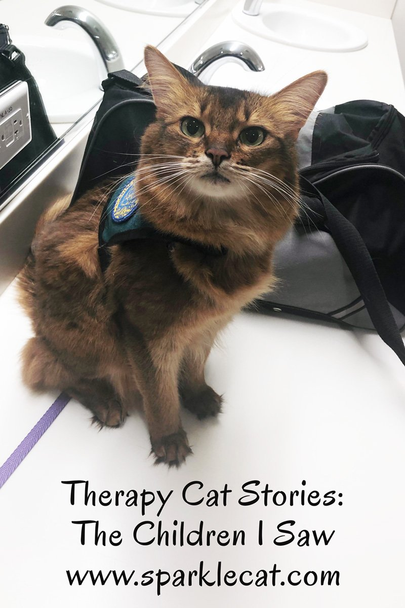 Summer goes to the children's hospital and has a nice therapy cat visit.