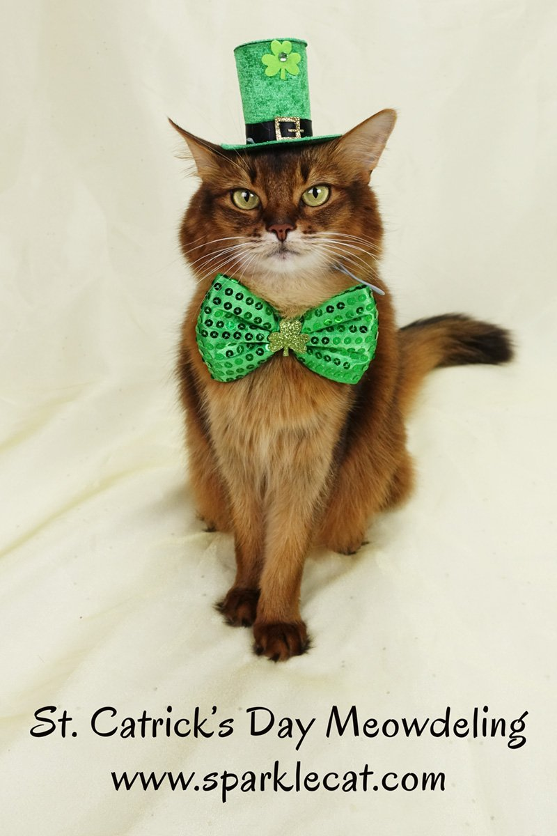 Summer does some St. Catrick\'s Day modeling.
