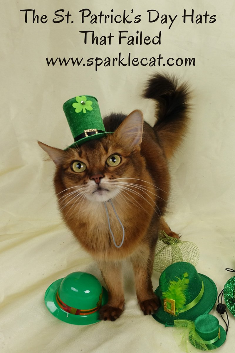 Summer models the St. Patrick\'s hats that didn\'t look so good.