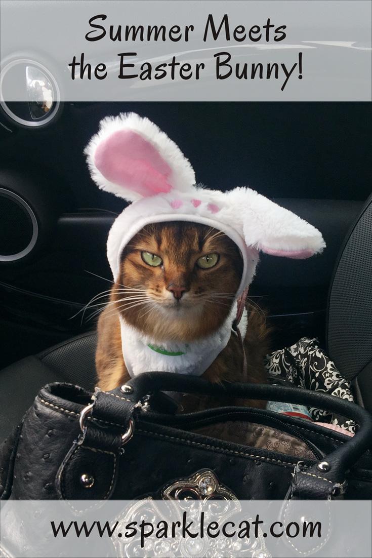 I Met the Easter Bunny!