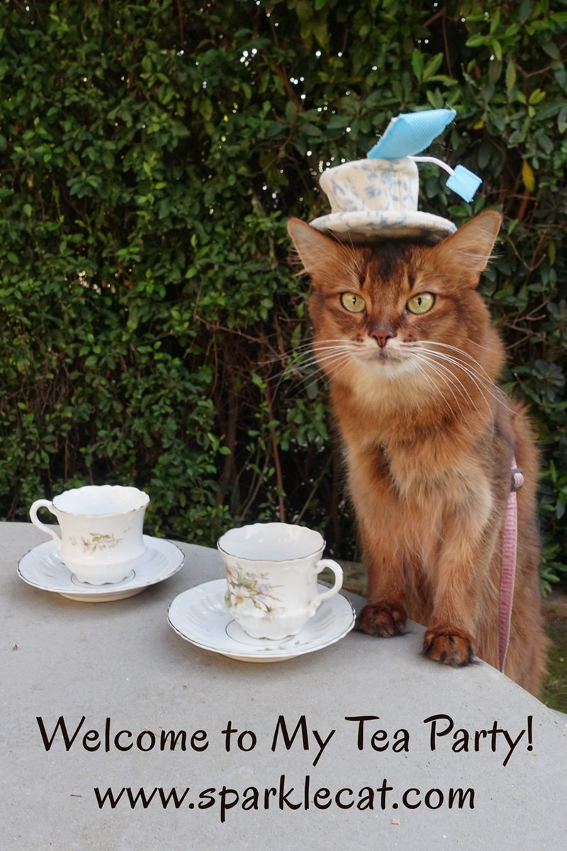 Welcome to My Tea Party!