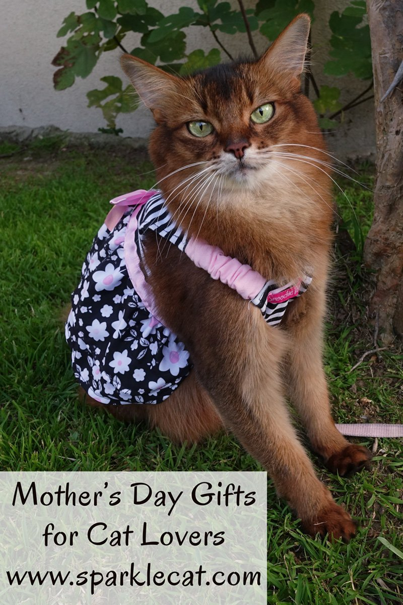 Mother\'s Day Gifts for Cat Lovers From Etsy
