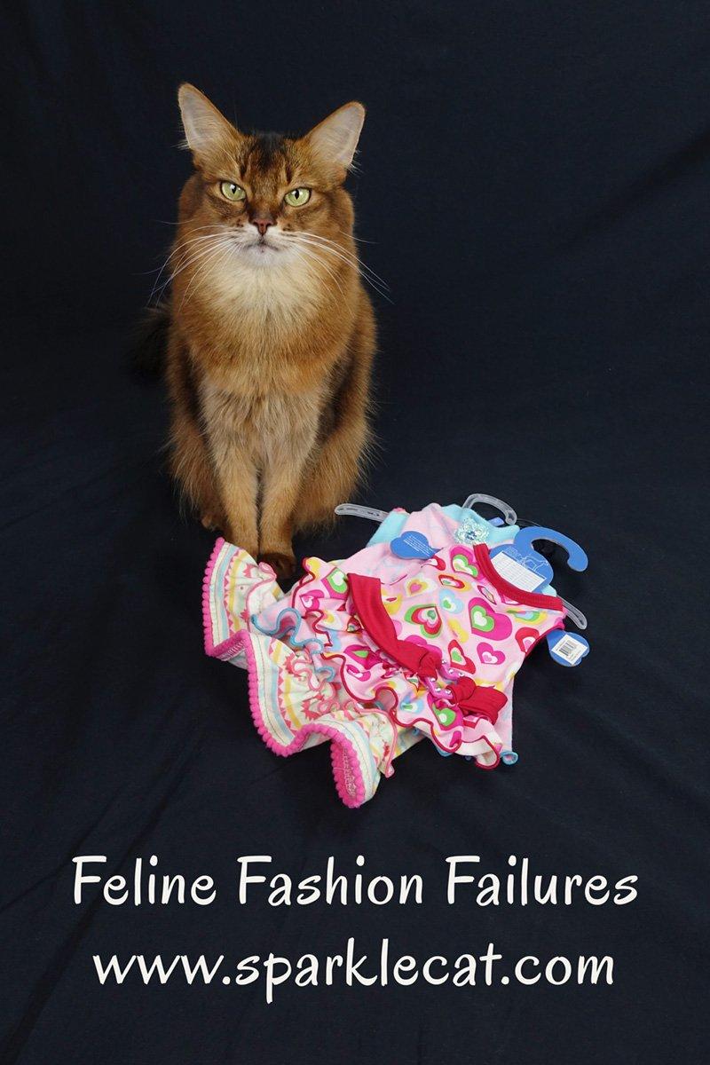 Feline Fashion Failures
