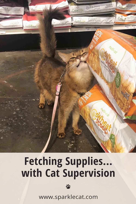 Picking Up Supplies