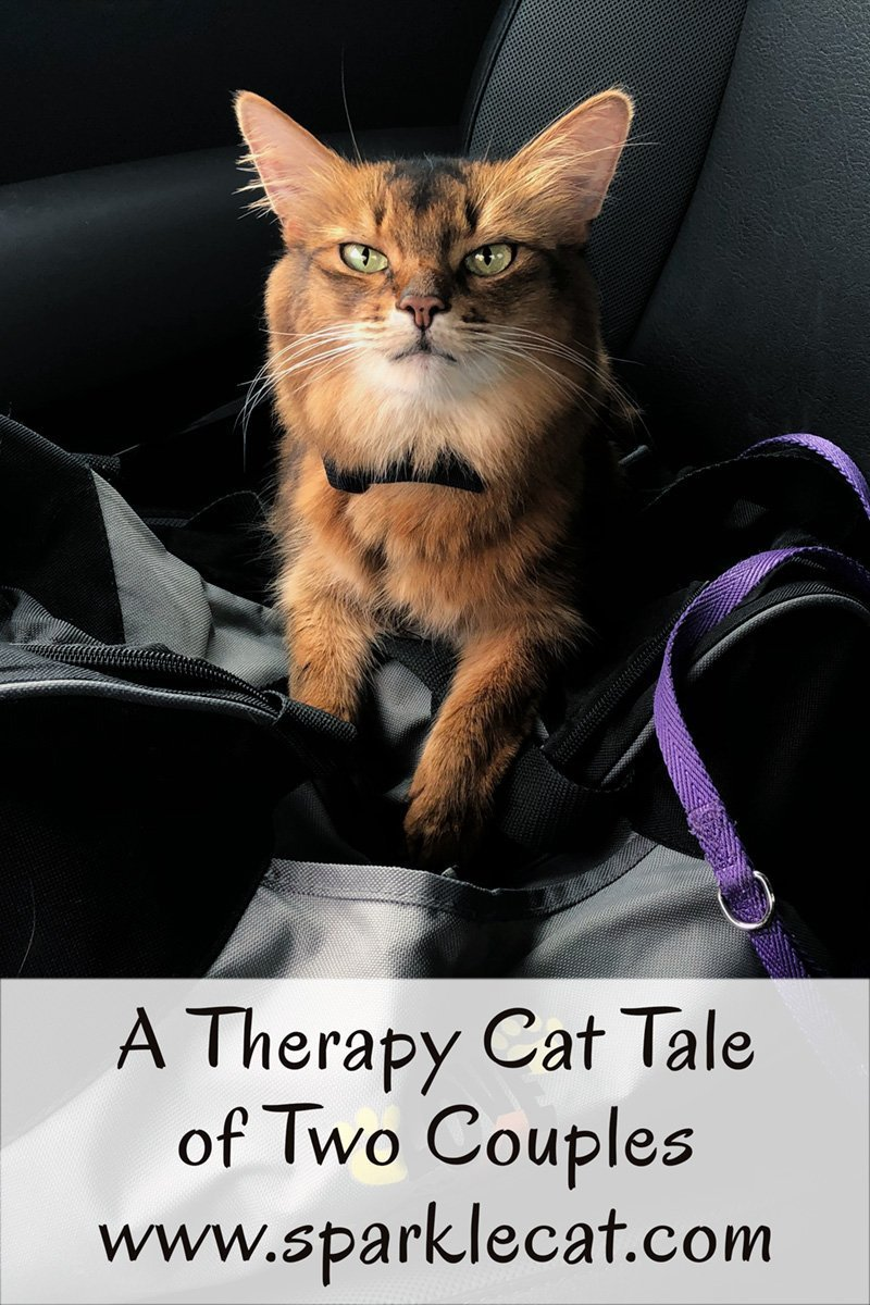 On Summer's most recent therapy cat visit, she meets two very different couples who both need the same thing from her.