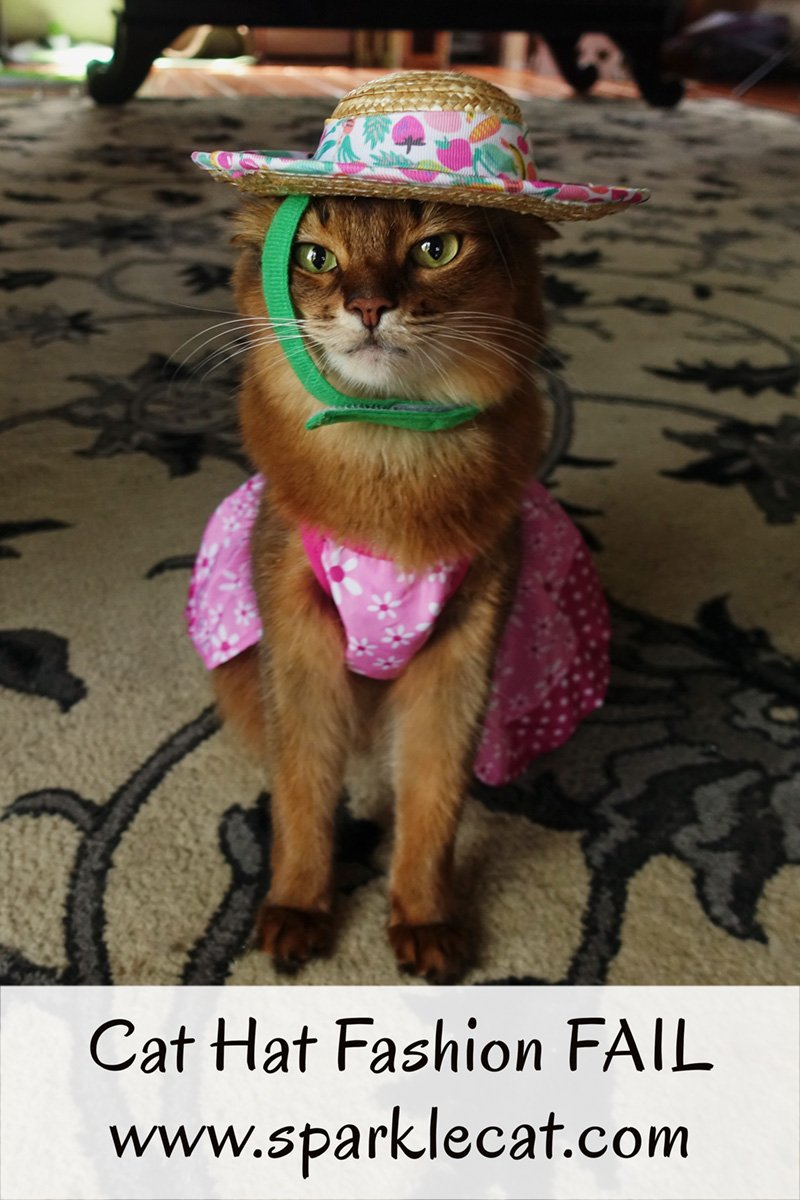 Is Summer\'s straw hat a cat hat fashion FAIL? It certainly looks like it.