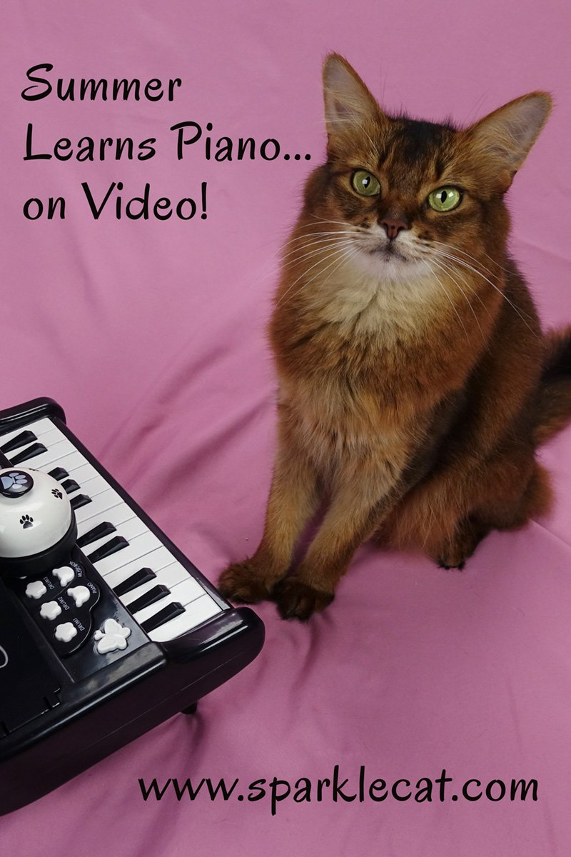 My Piano Lesson on Video!