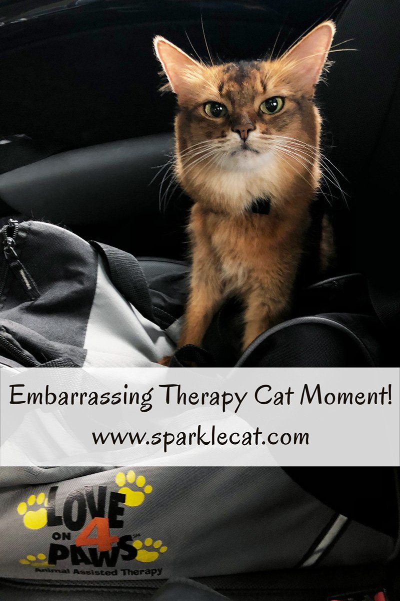 Summer pays a therapy cat visit to a nursing home... and has an embarrassing moment because of her human.