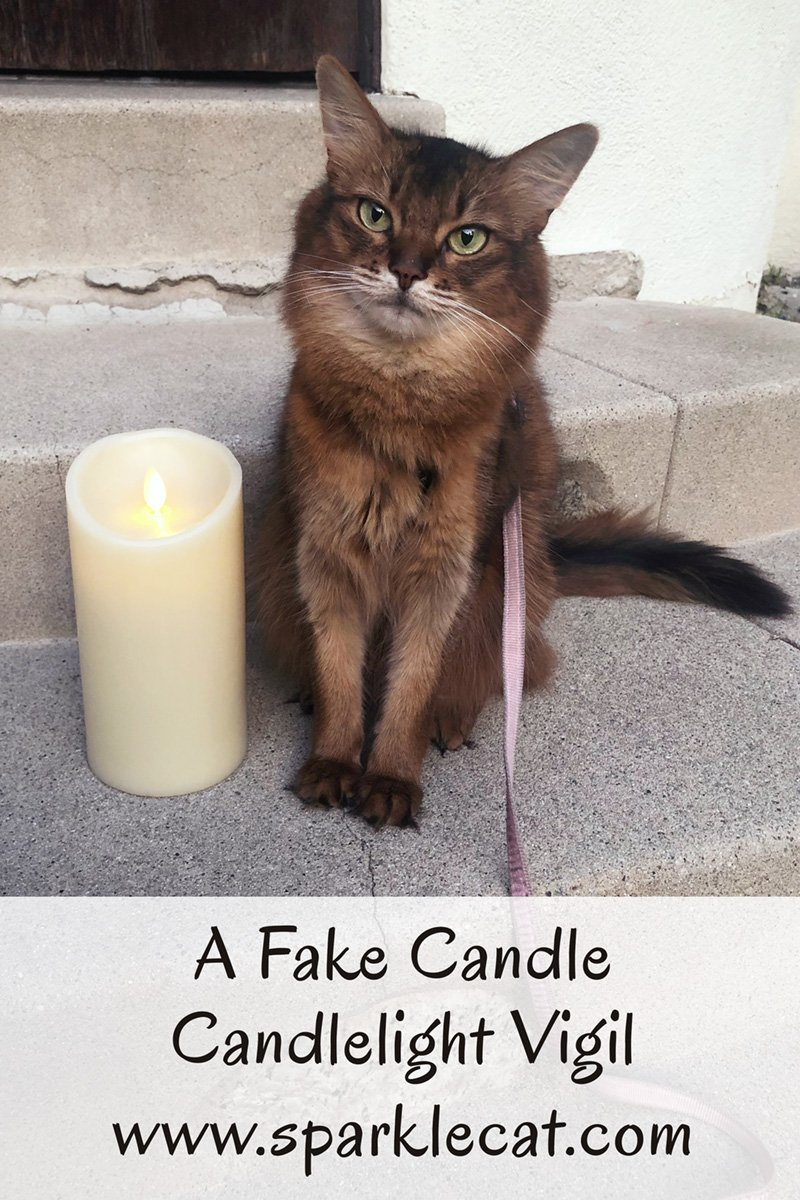 A Fake Candle Candlelight Vigil