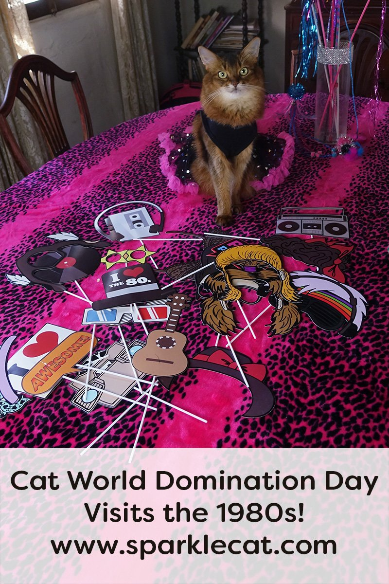 Cat World Domination Day, 1980s Edition