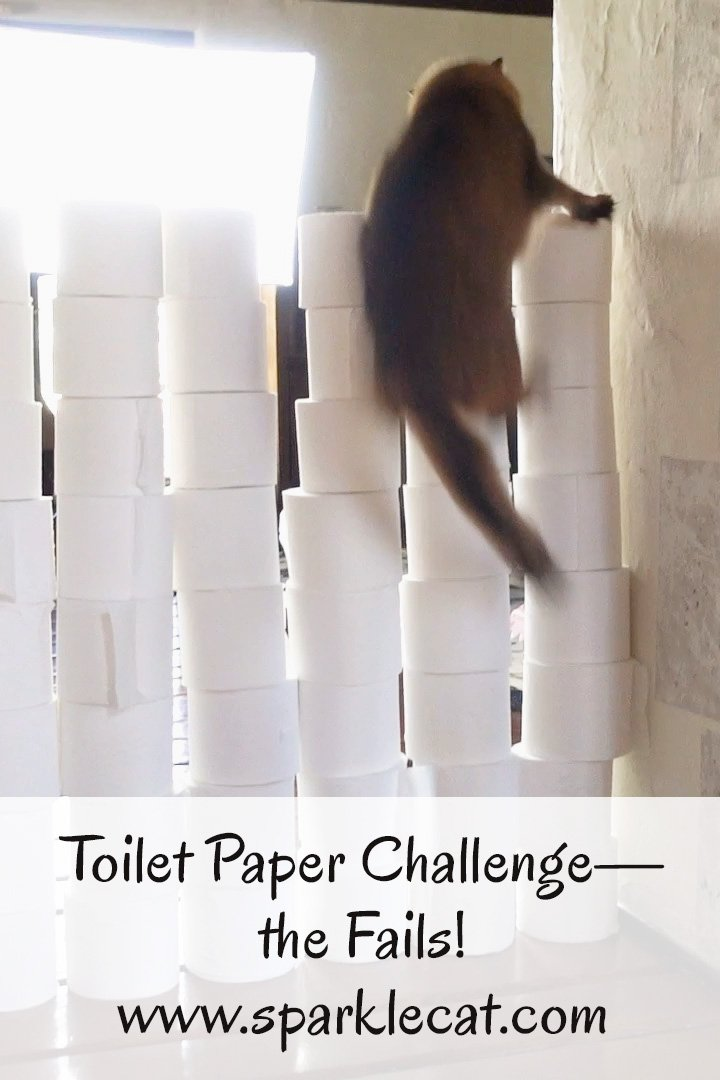 Toilet Paper Challenge: The FAIL Video