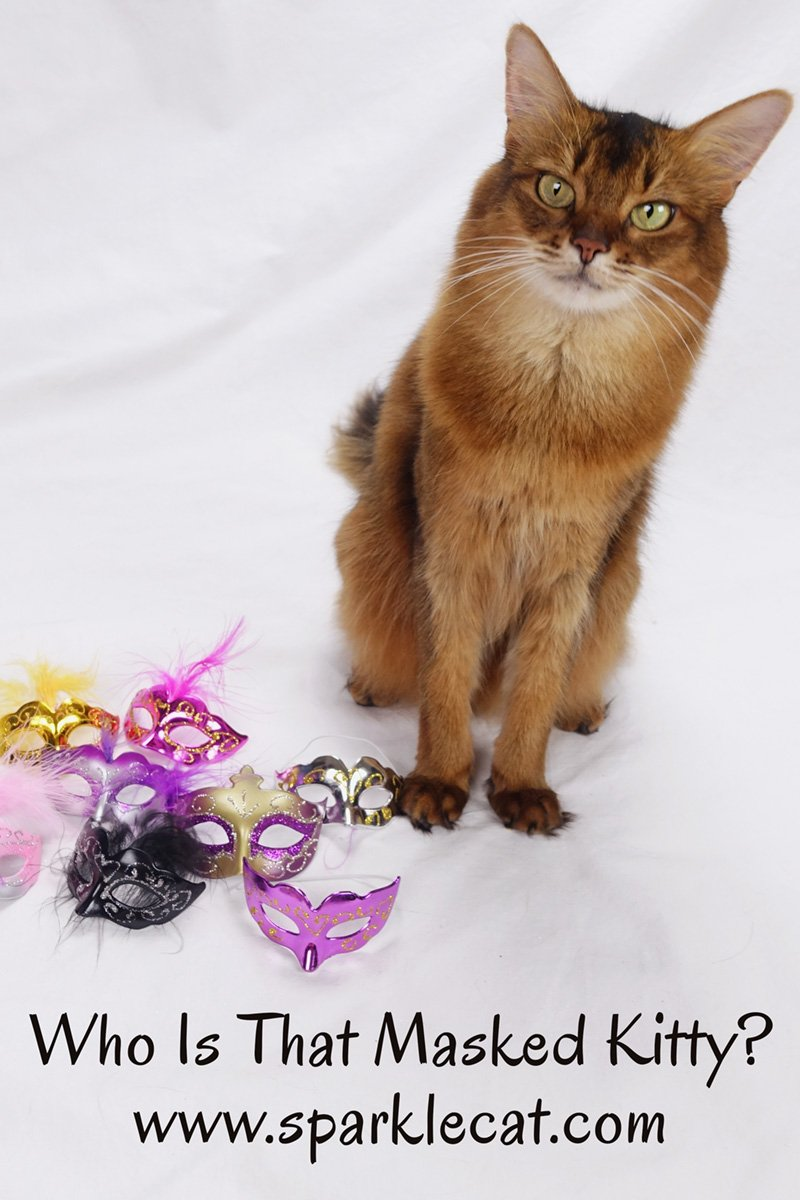 Summer has a variety of Mardi Gras style masks and tries one on.