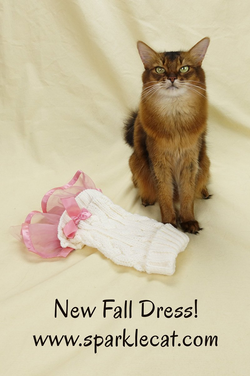 Summer\'s human brings home a new fall dress... but it looks a lot like another dress she already has.