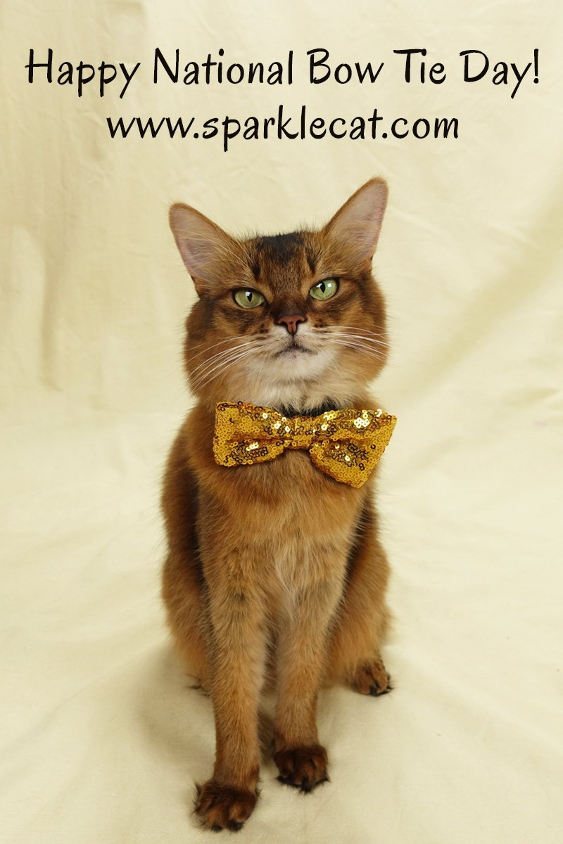 It\'s National Bow Tie Day, and Summer shares some of her bow ties from the past... and a new one too.