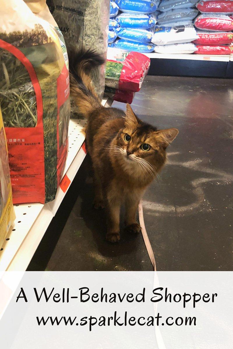 A Well-Behaved Shopper