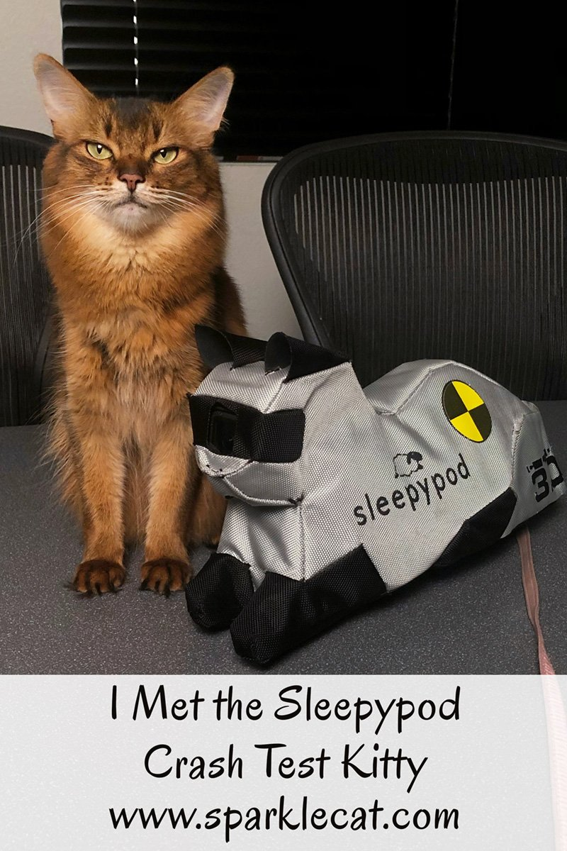 Summer goes to the Sleepypod offices and meets Cleo, the crash test kitty, and finds out about how the company keeps their carriers and harnesses safe.