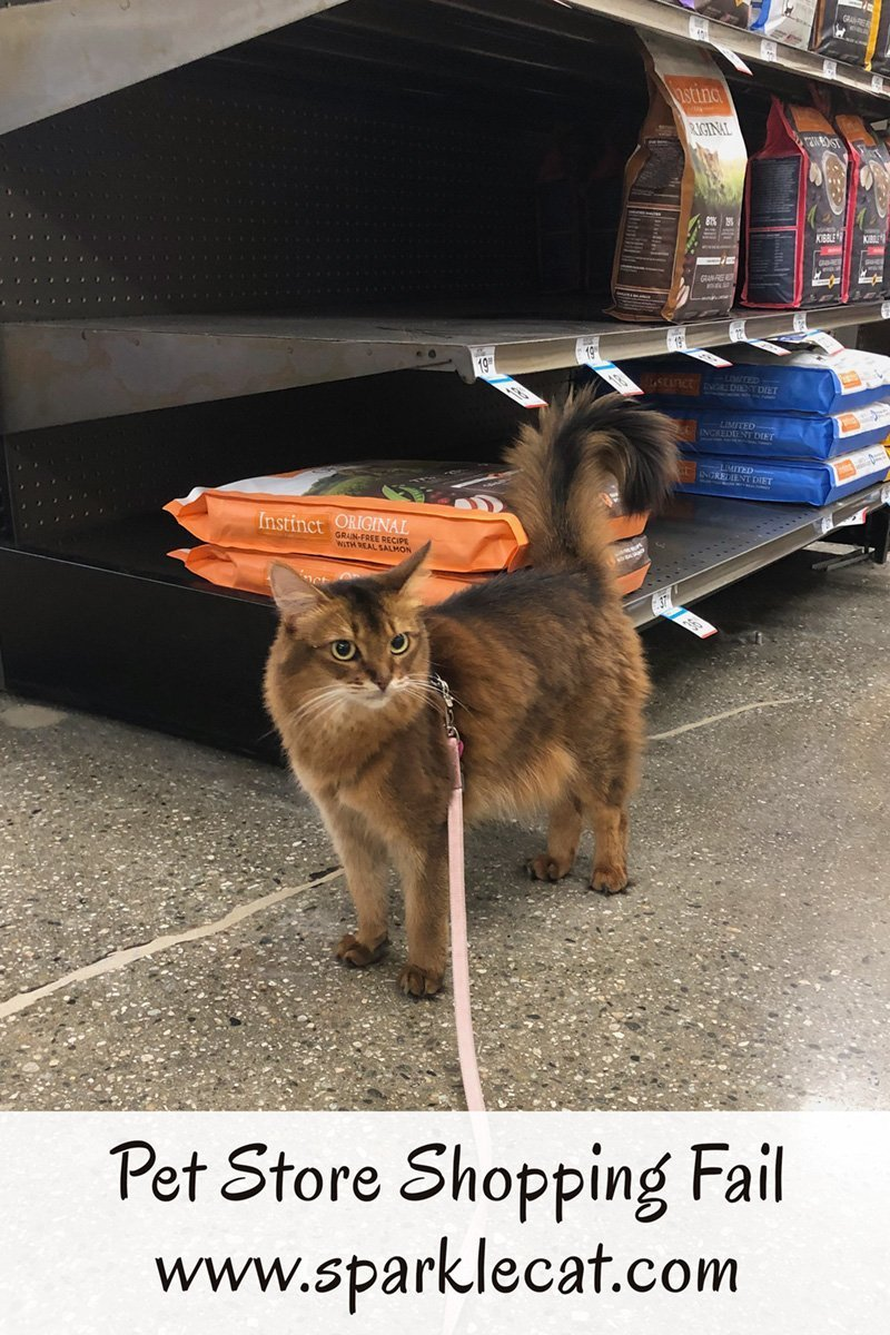 Summer accompanies her human to the pet store, but the shopping trip is a bust.