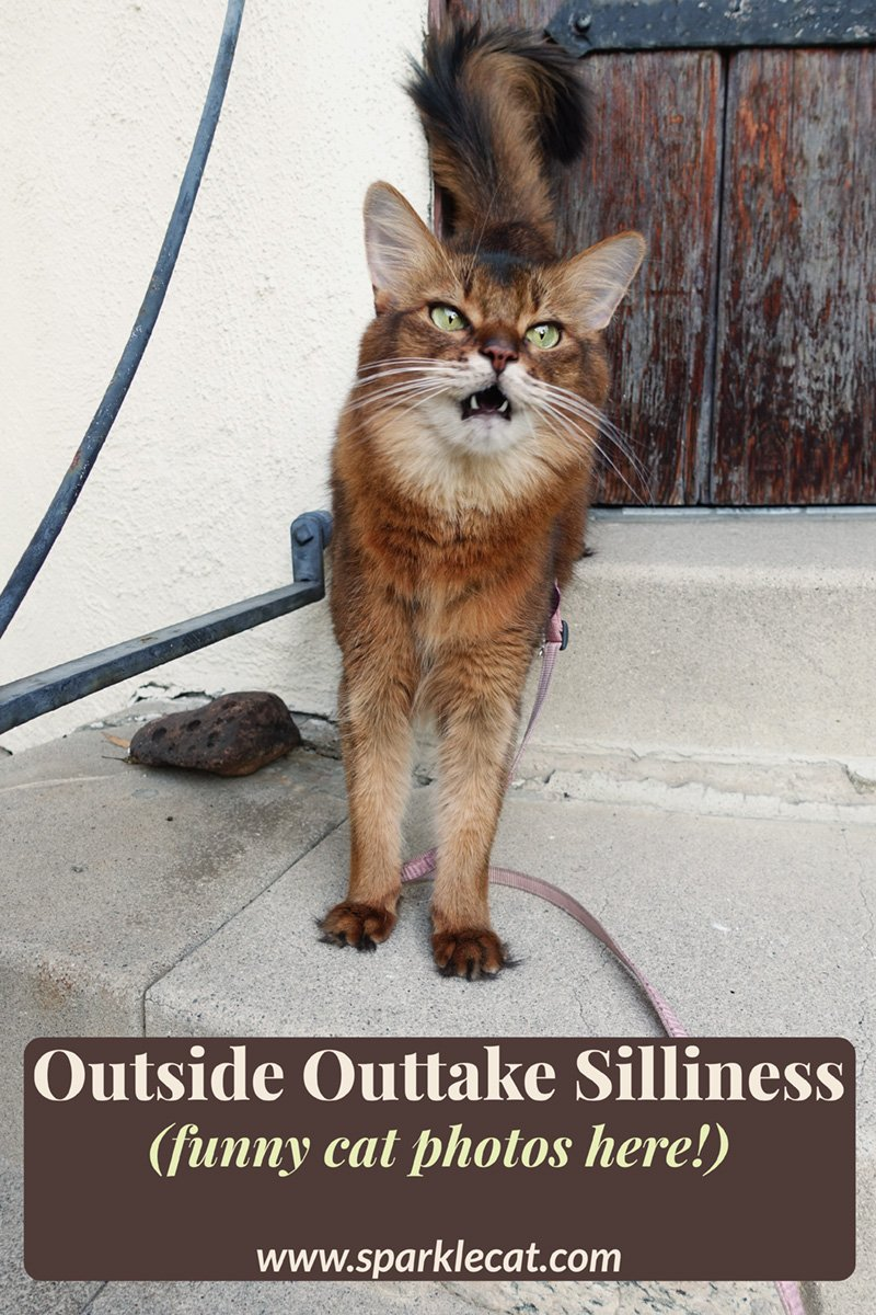 Outside Outtake Silliness