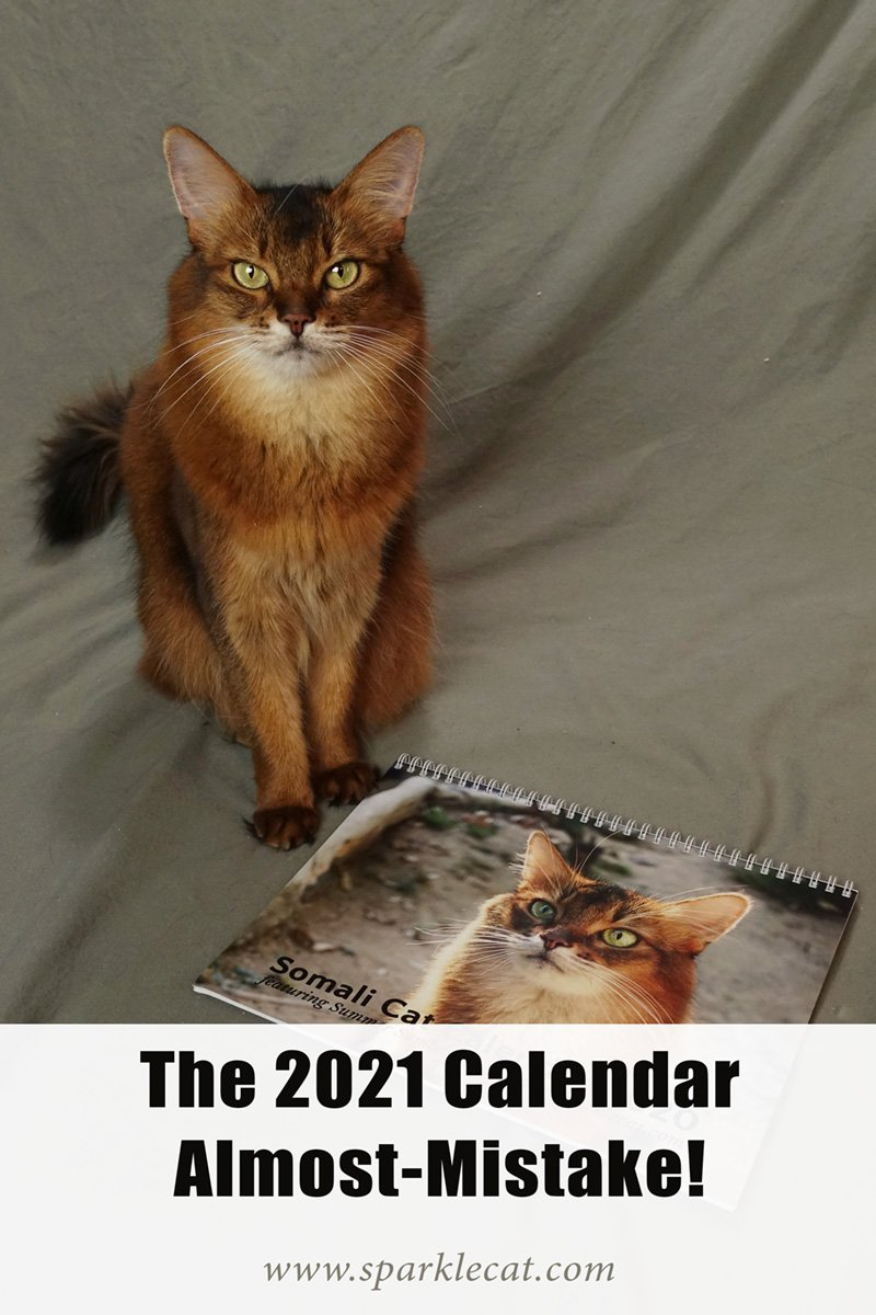 The 2021 Calendar SNAFU (Now Fixed!)