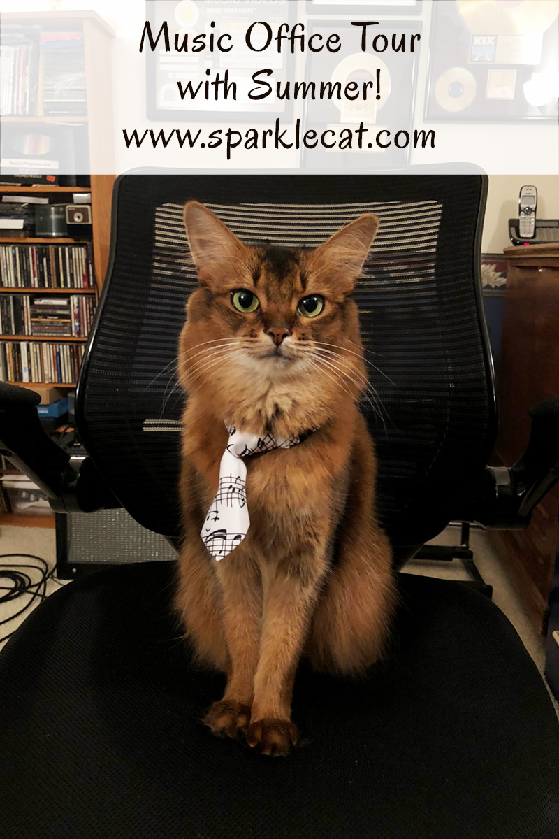 Summer offers up a tour of her human's boyfriend's music room, and takes a selfie in his office chair.