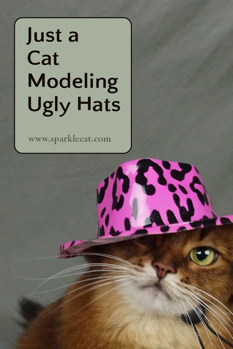 Ugly Cat Hat Modeling Session