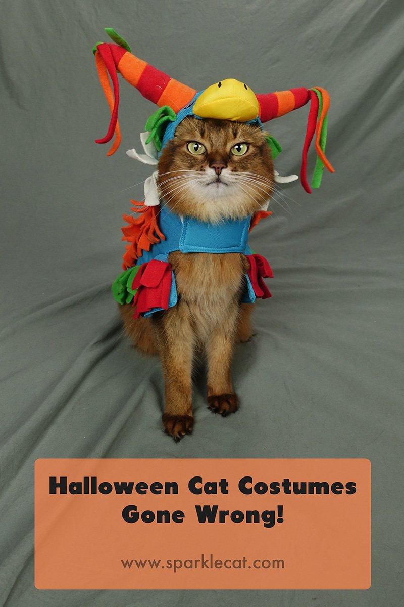 Halloween Costume Fails