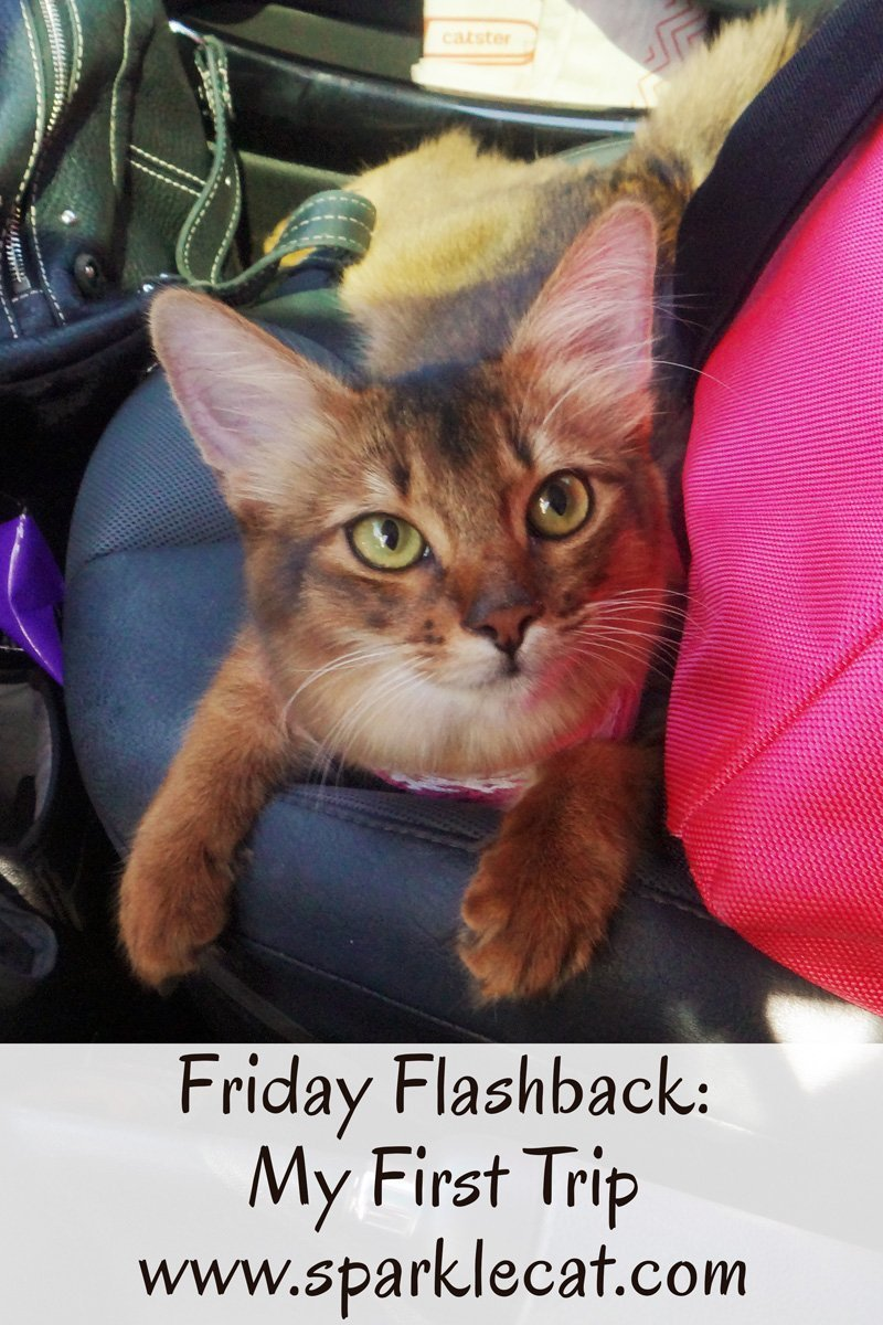 Friday Flashback: My First Trip
