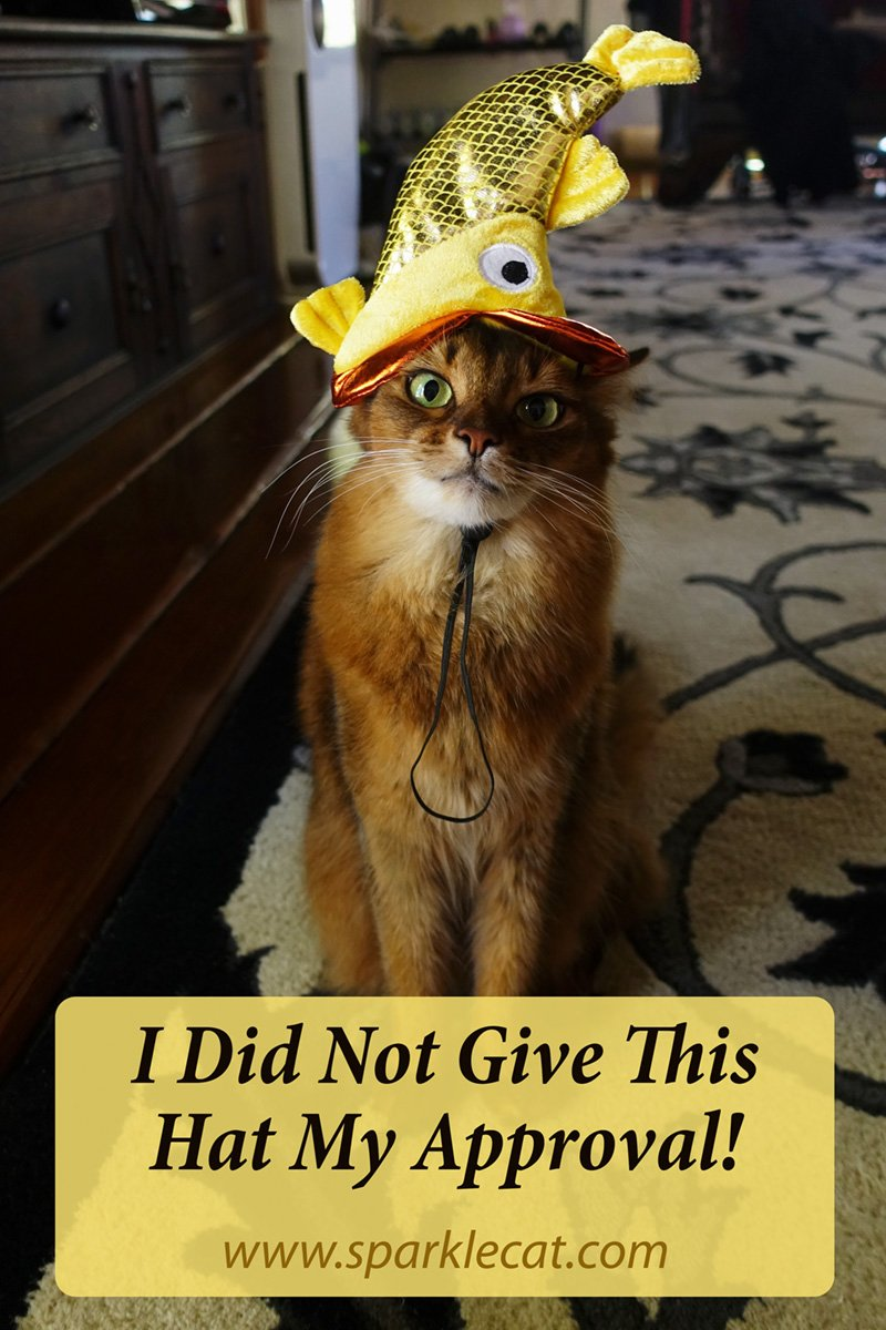 I Did Not Give This Halloween Headwear My Approval!