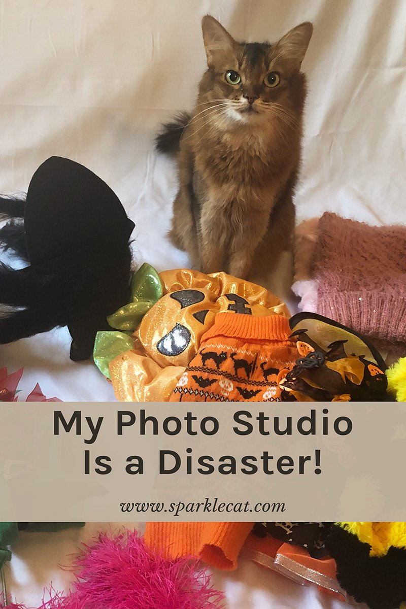 My Photo Studio Is a Disaster!