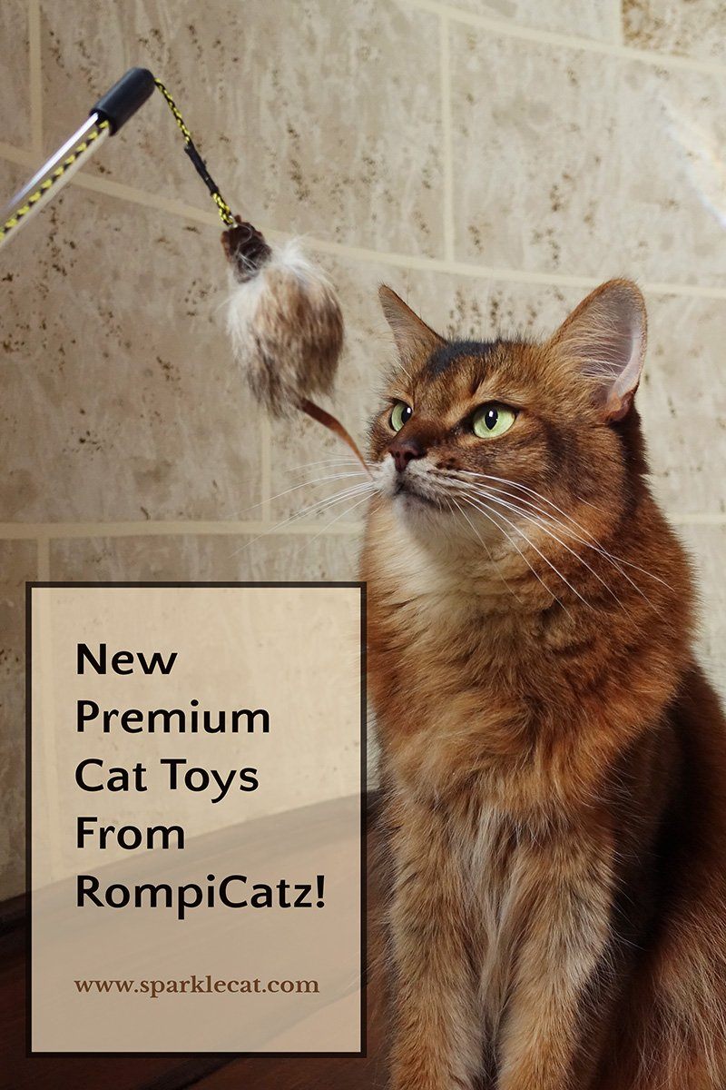RompiCatz Premium Cat Toy Fun... and a Giveaway!