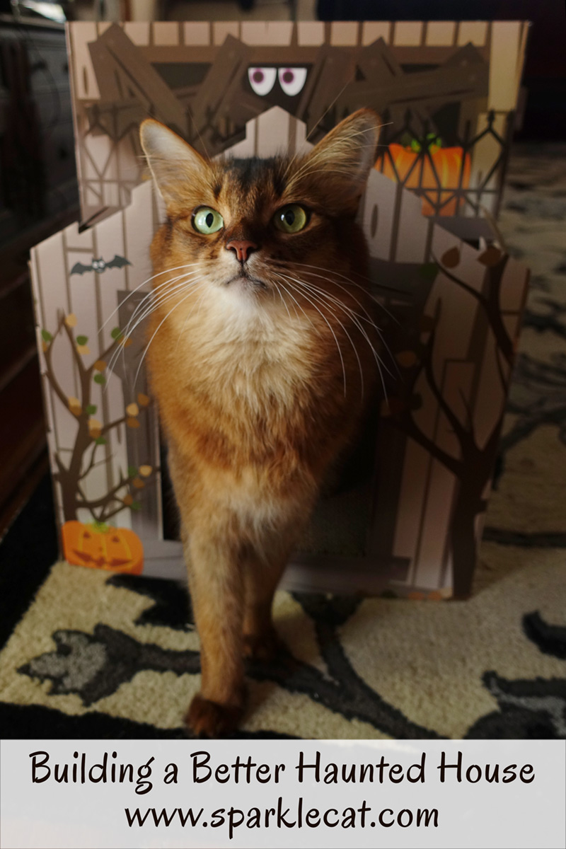 Summer's human gets a Haunted House scratcher and assembles it.
