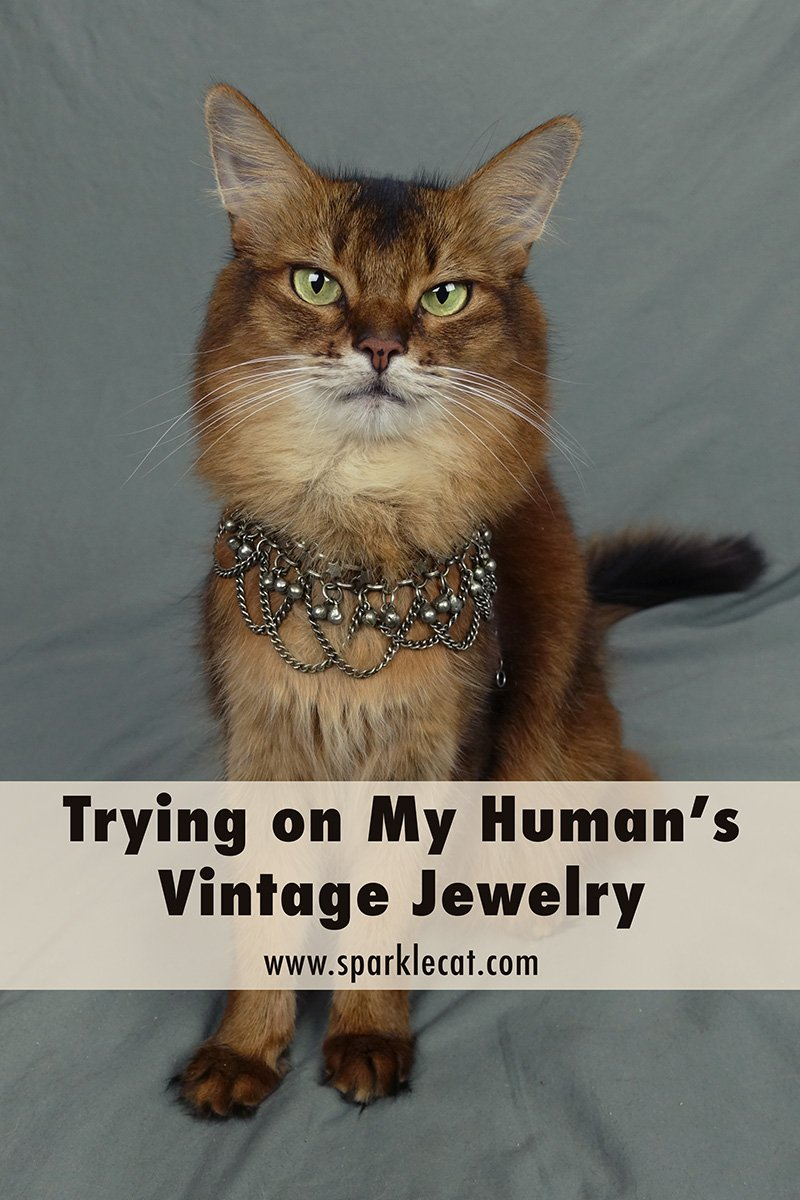 Trying on My Human\'s Vintage Necklaces