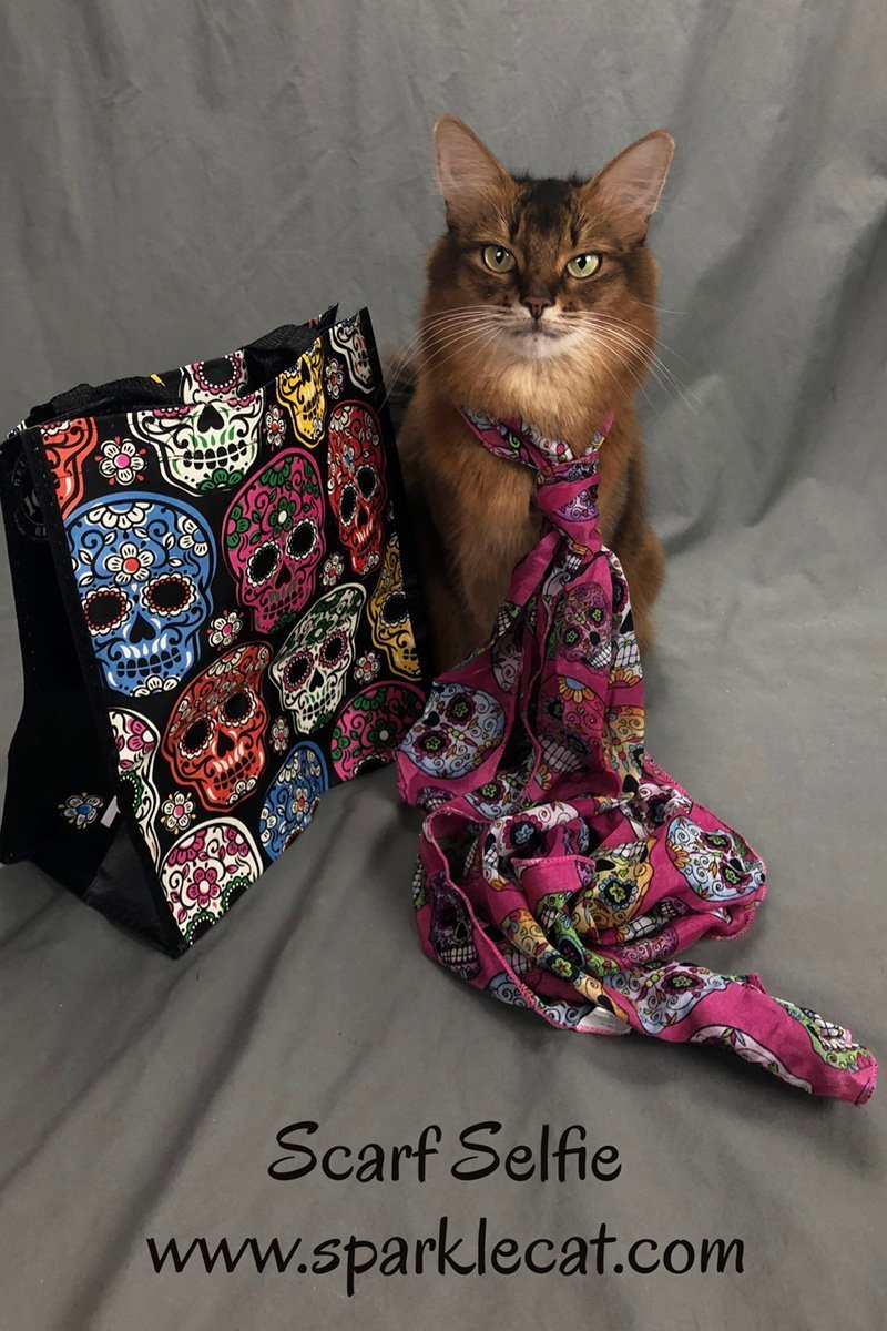 Summer decides to do this week\'s Sunday selfie while wearing her pretty Day of the Dead scarf.