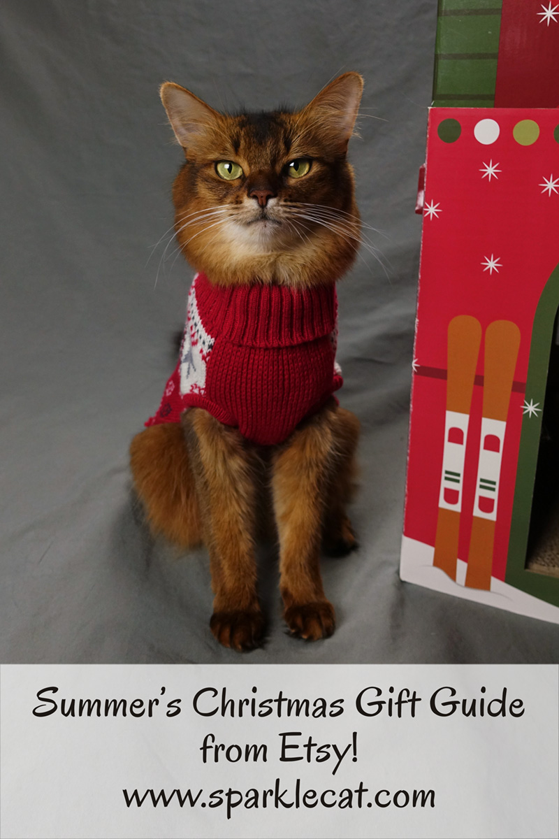 Summer presents her Christmas Gift Guide for cat lovers and cats, from Etsy