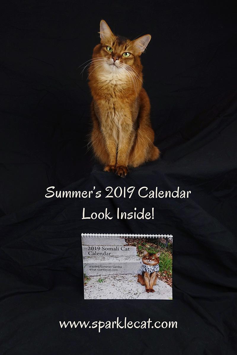 Summer's 2019 calendar is here!