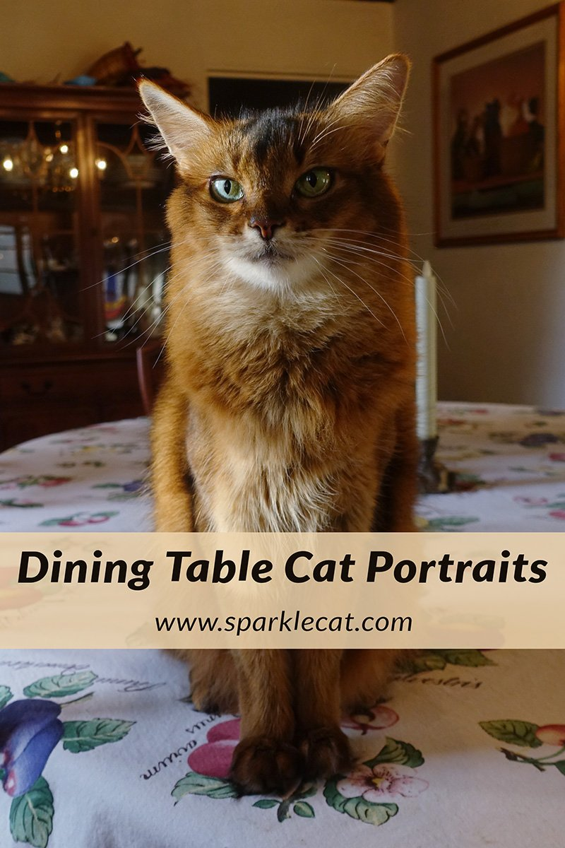 Dining Table Portraits