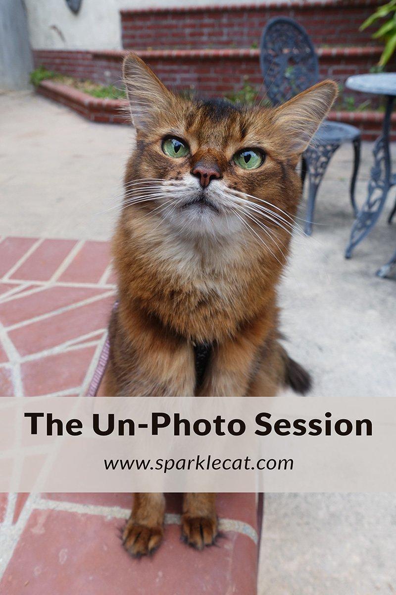 The Un-Photo Session