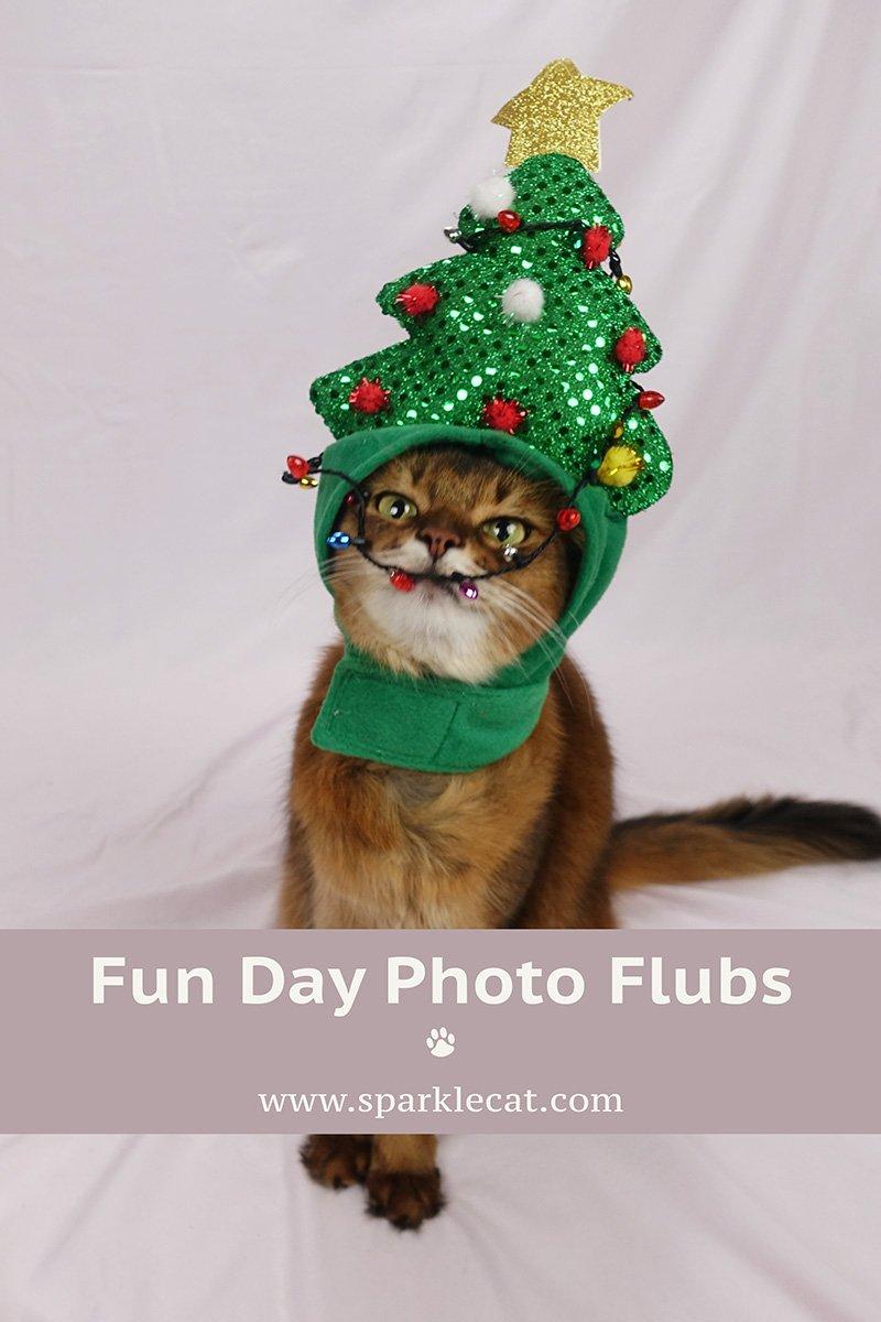 Funday Photo Flubs