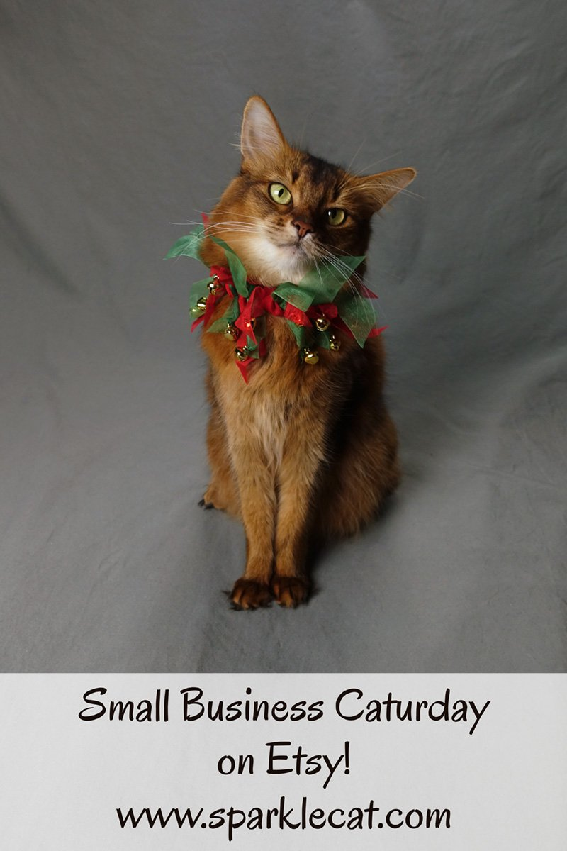 Summer shares some cat gift ideas from small businesses that sell on Etsy.