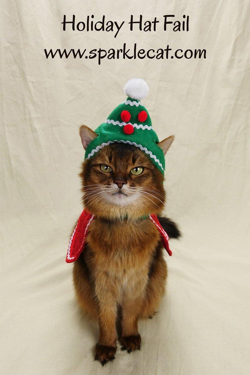Holiday Hat Fail